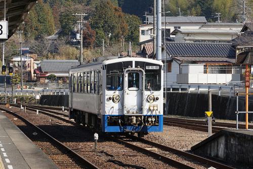 kouchi605b_DSC02561.JPG