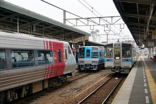 kouchi816b_DSC02782.JPG