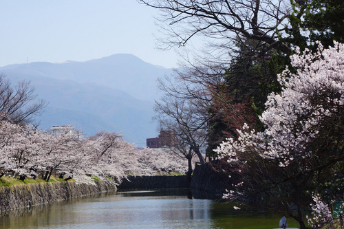 matsumoto107B_DSC06548.jpg