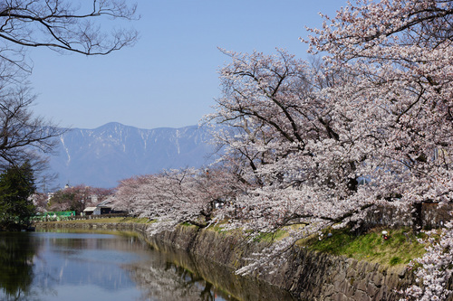 matsumoto109B_DSC06565.jpg