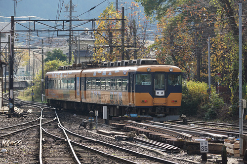 ooigawa404b_DSC01609.JPG