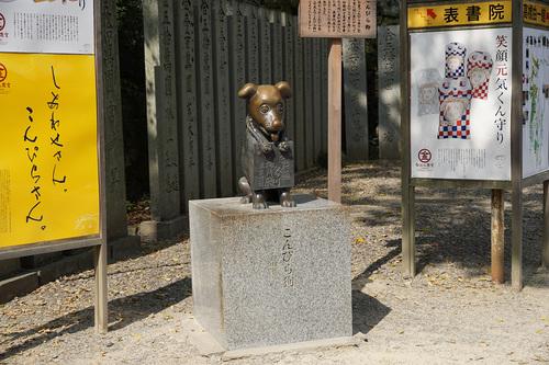 shikoku312b_DSC09896.JPG