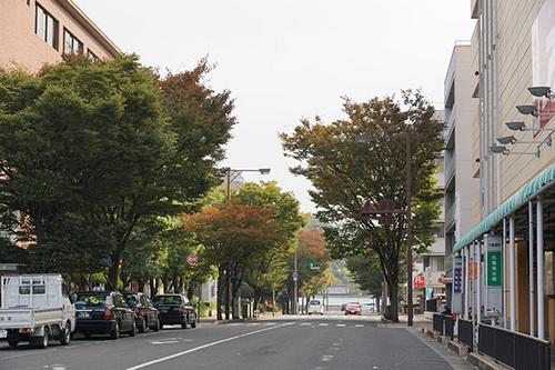 shikoku404s_DSC00009.JPG