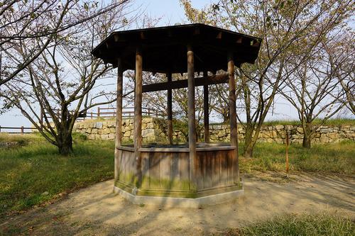 shikoku418b_DSC00102.JPG