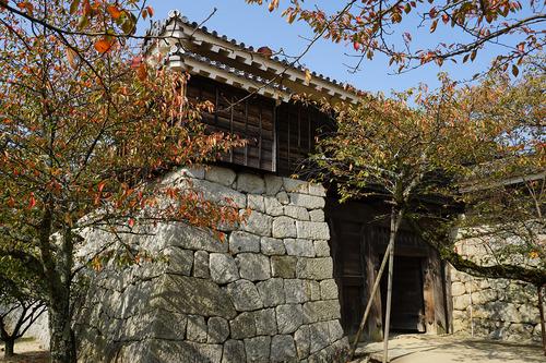 shikoku713b_DSC00357.JPG