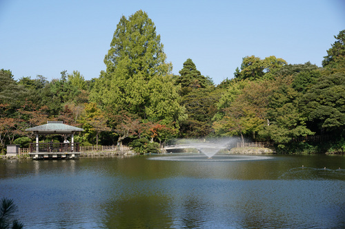 takaoka206B_DSC01288.jpg