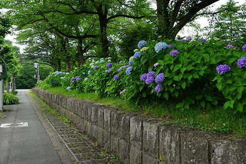 yamagata304s_DSC04112.JPG