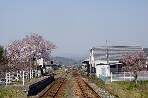 hamamatsu220s_DSC05900.JPG