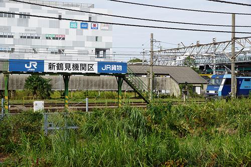 kanagawa103s_DSC08607.JPG