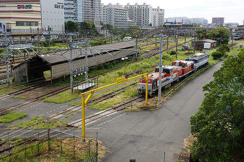 kanagawa106s_DSC08628.JPG
