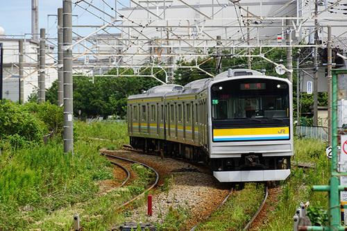 kanagawa220s_DSC08778.JPG