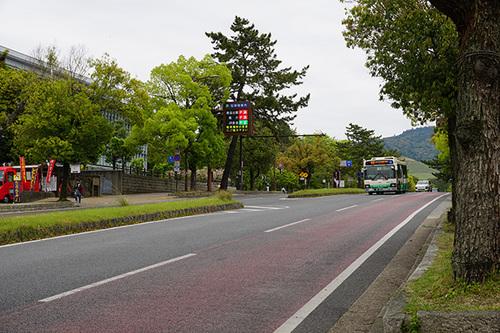 narakyoto113s_DSC06256.JPG