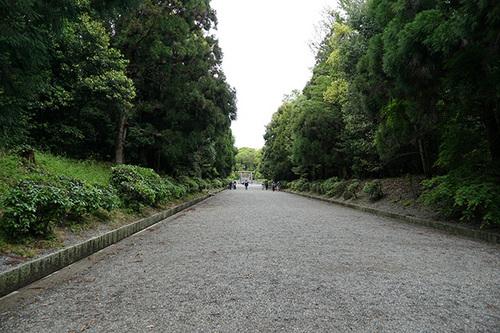narakyoto909s_DSC06963.JPG