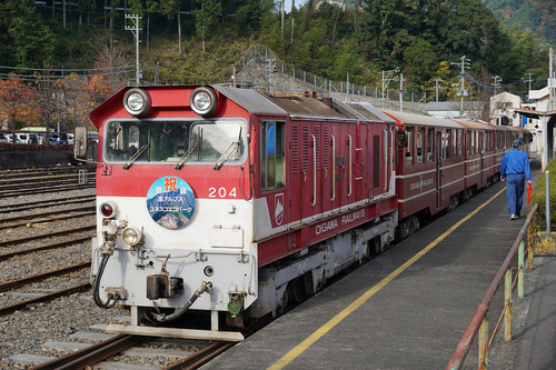 ooigawa317b_DSC01595.JPG