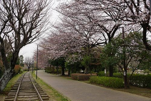 samukawa114s_DSC05589.JPG