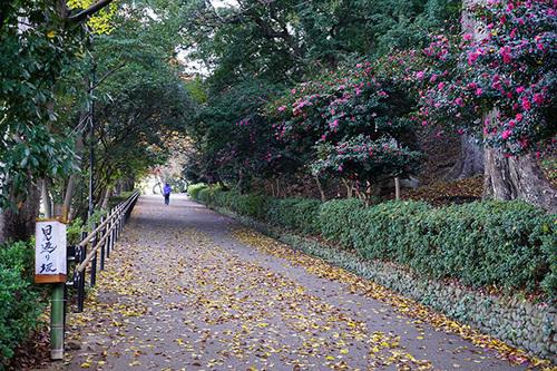 shikoku209s_DSC03269.JPG