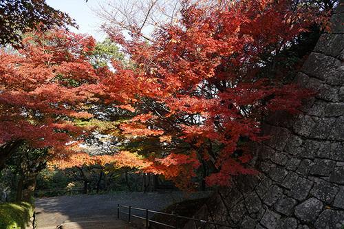 shikoku218s_DSC03334.JPG