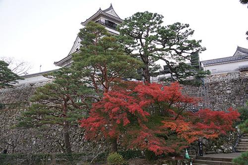 shikoku613s_DSC03813.JPG