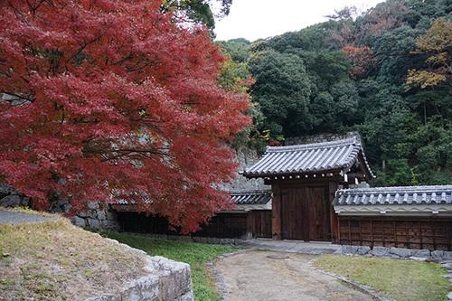 shikokuB17s_DSC04297.JPG