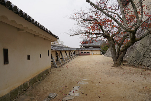 shikokuC13s_DSC04380.JPG
