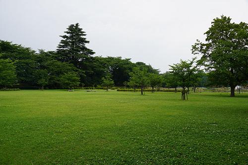 yamagata412s_DSC04184.JPG