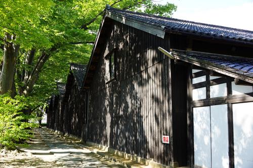 yamagata606b_DSC08435.jpg