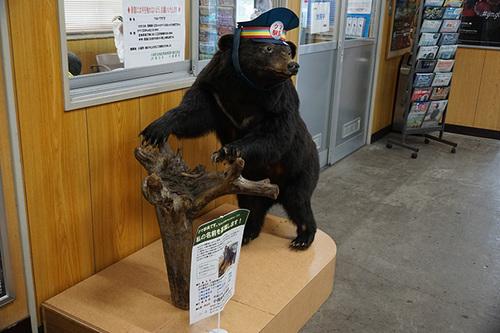 yamagata613s_DSC04400.JPG