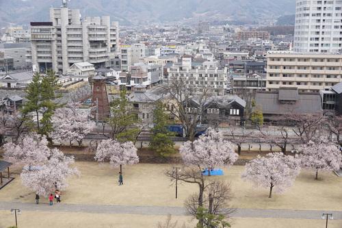 yamanashi117b_DSC04645.jpg