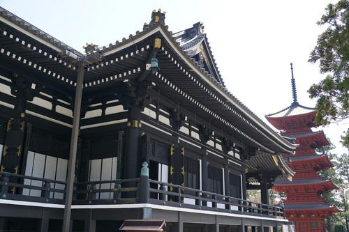yamanashi212b_DSC04774.jpg