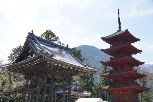 yamanashi213b_DSC04782.jpg