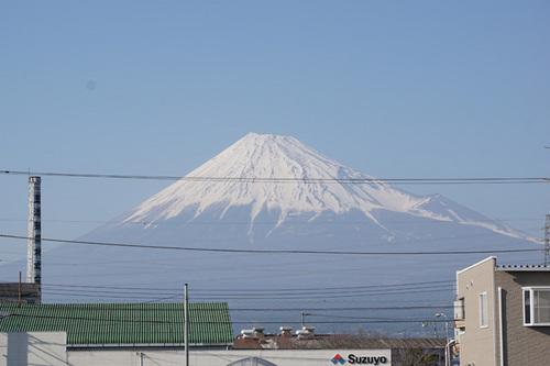 yamanashi314s_DSC04919.jpg