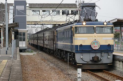 yokokawa314s_DSC01952.JPG