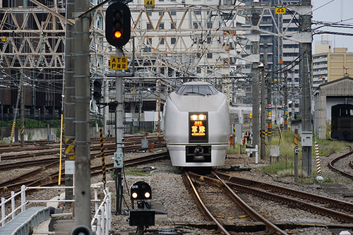 yokokawa319s_DSC02002.JPG
